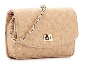 dsw purse